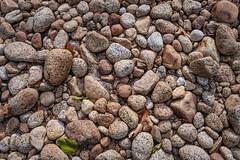 Merced River Bed (luqmac) Tags: yosemitevalley yosemitenationalpark nikoncameras nikond800 california califroniatravel usatravel fallcolors travel darrylmcelroy rocks