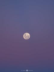 Moon at Sunset (Joel Bramley) Tags: moon sunset composite sky dust lunar nature