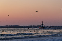 Sunrise (nolte.photo) Tags: wasser eis frost sonnenaufgang morgen vögel strand leuchtturm