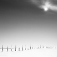 Winter Day (Bernd Walz) Tags: landscape snowscape trees winter minimalistic minimalism fineart square silence blackandwhite bnw bw monochrome