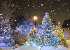 mce_5674to5695snowstack1jsm (JayEssEmm) Tags: night snow lights christmas xmas holiday tower hill botanic garden boylston massachusetts