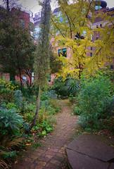 DSC_0812 Phoenix Gardens,4x6 (mikeinfleet) Tags: london covent garden sculpture photo explorers londonphotoexplorers