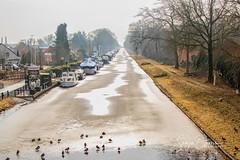 CANAL TO BEVERLO (Sonja Ooms) Tags: animal belgie belgique belgium beverlo birds canal canaltobeverlo ice kanaal leopoldsburg nature natuur pleziervaart water winter boat