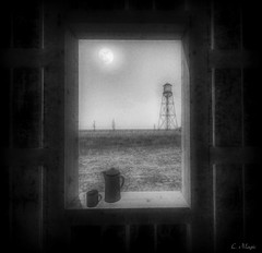 View (Loegan Magic) Tags: secondlife window blackandwhite sky grass silo sun monochrome windowsill