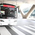 UAE National Team arrives to hamad airport 25-11176