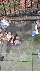20191211_142515 (prettylost) Tags: posh high heels abandoned lost discarded stiletto shoes