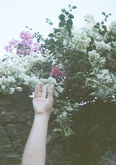 Teehee 2 (funky_sexy_groovy_marky) Tags: bali halfframe analogue