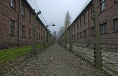 Auschwitz I (3) (Anders_3) Tags: auschwitz poland oświęcim ww2 history concentrationcamp holocaust barbedwire autumn nazism memorial auschwitzi secondworldwar 7s77180v2 nikond700