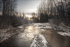 20191130. Ice on the water. 1522-1 (Tiina Gill (busy)) Tags: estonia outdoor winter snow pond ice sipa forest landscape