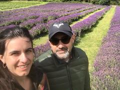 Daniel & Julia (Australia y Nueva Zelanda)