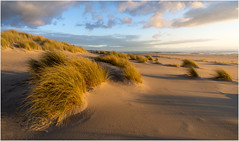 Golden hour at Maasvlakte Beach (Rob Schop) Tags: beach maasvlakte noordzee seascape goldenhour sand dunes sea sidelit wideangle light sonya6000 samyang12mmf20 pola handheld f11 clouds zuidholland relax hoyaprofilters contrast color lrcc