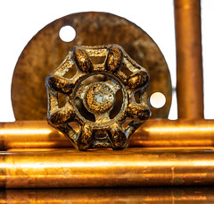 The valve handle. (CWhatPhotos) Tags: cwhatphotos flickr photographs photograph pics pictures pic picture image images foto fotos photography omd em1 mkll 60mm macro prime lens f28 close up closeup table top various items ornaments from tk maxx brass metal ornament handle valve copper pipe