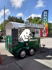Shaved Ice (aliciamccarthy88) Tags: cute bear polarbear shavedice ice summer doodles