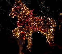 magic horse (ttounces) Tags: ttounces wonderment lights horse soldier toy child magic