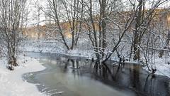 Bientôt couvert de glace (sosivov) Tags: sweden snow landscape river ice winter white