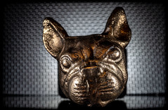 The Pug. (CWhatPhotos) Tags: cwhatphotos flickr photographs photograph pics pictures pic picture image images foto fotos photography omd em1 mkll 60mm macro prime lens f28 close up closeup table top various items ornaments from tk maxx brass metal pug pugg dog ornament