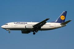 D-ABEL (PlanePixNase) Tags: hamburg ham eddh fuhlsbüttel airport aircraft planespotting lufthansa boeing 737 737300 b733 733