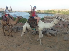 Toni & Veronica (Egipto y Estambul)