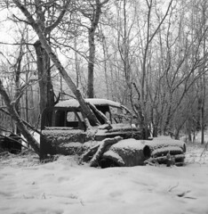 Rolleicord V Rollei Retro 80s. (Fistfulofpowder) Tags: rolleicord v medium format snow black white film bw bnw truck abandoned tree trees cold rollei abandonedalberta decay rust abandon
