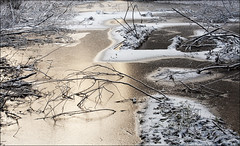 20191130. Ice on the water. 1515-1 (Tiina Gill (busy)) Tags: estonia outdoor winter snow pond ice sipa forest
