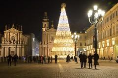 DSC_4870_5802 . Torino - Piazza S. Carlo con l'albero di Natale. Turin -  San Carlo square  with the Christmas tree. (angelo appoloni) Tags: piemonte torino piazza san cartlo dicembre albero di natale lacittàmetropolitanaditorinovistadavoi