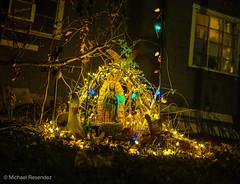 (my.tx.views) Tags: nighttime nightphotography night availablelight perspective christmasdecorations christmaslights christmas catholicreligion catholic ourlady ourladyofguadalupe