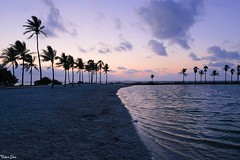 There's no place (gusdiaz) Tags: sunrise amanecer coralgables miami fl florida atardecer sunset waves olas reflection reflejo relaxing colorful ocean water mar oceano sand sandy salty saltlife colorido sal arena relajante stunning nature naturephotography gorgeous morning mañana naturaleza natural hermoso zen fuji fujifilm xt2 wideangle beautiful amor peace peaceful clouds sky nubes cielo vacaciones vacation emotion emotions moment momentos