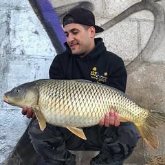 Peschiera 2019 (lucamuzi94) Tags: carpfishing fish fishing passion