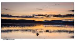 Golden sunset (Ignacio Ferre) Tags: embalsedesantillana santillanareservoir lago lake manzanareselreal madrid españa spain landscape paisaje naturaleza nature dorado golden nikon sunset puestadesol anochecer