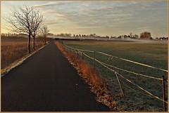 Mein täglicher Weg zur Arbeit (der bischheimer) Tags: strase weg zaun morgens morgennebel canon derbischheimer fences
