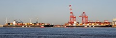 Ships of the Mersey---MSC Sao Paulo & Eleni (sab89) Tags: river mersey shipping ships ship wirral estuary irish sea liverpool