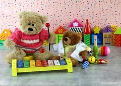 WE LOVE TO MAKE MUSIC || WE MAKEN BEREGOEDE MUZIEK (Anne-Miek Bibbe) Tags: instrumentosmusicales musicinstruments muziekinstrumenten lookingcloseonfriday canoneos70d annemiekbibbe bibbe nederland 2019 tabletopphotography xylofoon xilófono xylophone xylophon happyteddybeartuesday speelgoed toy spielzeug giocattoli juguetes bringuedos jouets bear teddybear beertje teddybeer beer speelgoedbeer nounours minibeer minibear juultje jip