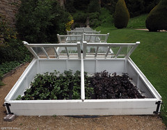 Repeat (peterphotographic) Tags: p5280133edwm chatsworthhouse derbyshire uk repeat olympus em5mk2 microfourthirds mft dslr ©peterhall chatsworth peakdistrict england britain coldframe garden plans growing