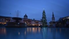 Trafalgar Square (rq uk) Tags: rquk nikon d750 reflections nikond750 afsnikkor1835mmf3545ged trafalgarsquare leelittlestopper
