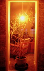 St Ives Cornwall (Paul Woolley Compact Snaps) Tags: decor lights hotel living st ives cornwall