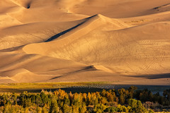 Golden Dunes (chasingthelight10) Tags: events photography travel landscapes deserts dunes mountains nightphotography highdesert places colorado greatsanddunesnationalpark