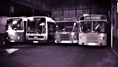 Back to the 'good old days' (The return of the spiceymexrice!) Tags: firstgroup first firstsouthernnational fsn yeovil somerset leylandtiger leylandlynx leylandnational2 35mm bw depot dms22v xlv143w h632ytc