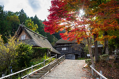 Momiji (Steffen Walther) Tags: japan reise steffenwalther travel colors red rot light herbst autumn fall houses takayama honshu umbrella nature landscpae traditional canon5dmarkiii scenery rural sunset evening tree maple canon 35 canon35l stairs
