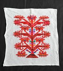 Textiles Mexican Oaxacan Chinantec (Teyacapan) Tags: vallenacional oaxaca mexico ranchogrande embroidery textiles