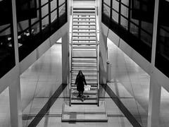 - downward - (-wendenlook-) Tags: sw bw monochrome street streetphotography architektur architecture treppe stairs berlin kreuzberg willybrandthaus spd