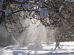 Winter Magic (kfocean01) Tags: nature winter snow landscape light snowy trees