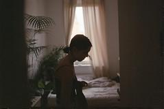 home (felixmünchow) Tags: 35mm analog photography nikon f90 fuji 400 asa ifyouleave somewhere filmisnotdead ishootfilm pellicola
