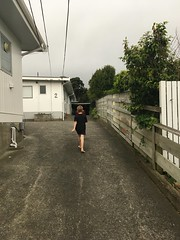 Run Home (anakiwa_forever) Tags: 3652019 wellington newzealand thunderstorm rain
