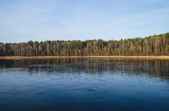 Winter landscape of the lake which is not frozen. (ivan_volchek) Tags: winter cold beauty forest reflection beautiful natural pond scenic green tree river ice blue spring view day lake landscape nature outdoor water coast houses icefloes melt mountain panorama season shore sky springtime tourism touristvillage travel white wooden baretree park