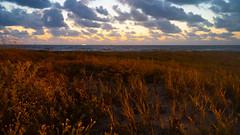 SouthPadreIsland_390-2 (allen ramlow) Tags: south padre island texas sunrise beach gulf coast sand sky water sony alpha