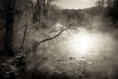 Rum River 20191211-GKA00738 (Sandhill Pictures) Tags: river water trees winter mist cold morning bw monochrome sony sonyalpha batis batis240 zeiss a7riii minnesota frost
