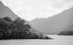 Llyn Padarn (chris watkins wales) Tags: llyn padarn north wales photography lake black white trees landscape quality