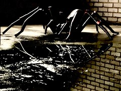 sculpture (falkmo) Tags: eisen schwarz dunkel dark wasser spiegelung spinne wall spider water black iron art sculpture