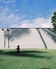 Palm tree (Yuki Ishikawa Photography) Tags: フィルムカメラ バケペン 中判カメラ ハワイ ワイキキ アロハ 西村カメラプリント アナログ写真 フィルム写真 爸爸有你就够了 蝶々の心臓 ポートレイト 人像攝影 mediumformat son palmtree filmphotography pentax67 filmisnotdead filmcamera 6x7 portrait hawaii honolulu aloha travel