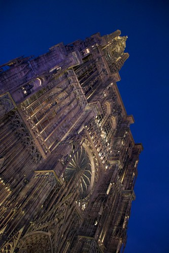 """Strasbourg Cathedral • <a style=""""font-size:0.8em;"""" href=""""http://www.flickr.com/photos/66868863@N00/49205975977/"""" target=""""_blank"""">View on Flickr</a>"""